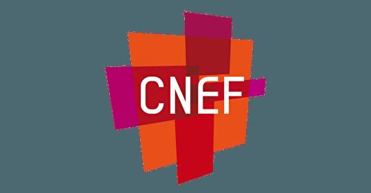 Conseil National des Évangéliques de France   Fraternité Chrétienne